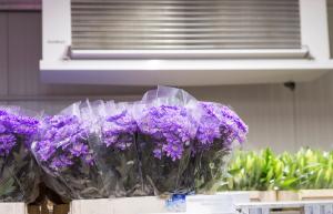 Unitherm-koeltechniek-toepassingen-bloemen-bewaring