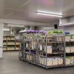 unitherm-koeltechniek-bloemen-en-planten-bewaring